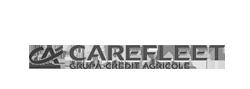 Carefleet